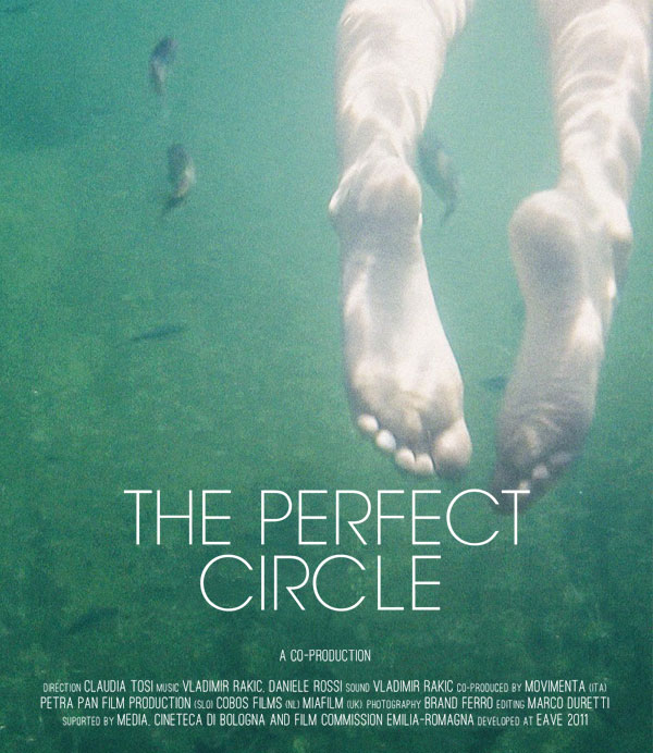 View The Perfect Circle